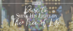 day23-treeoflife-advent2016
